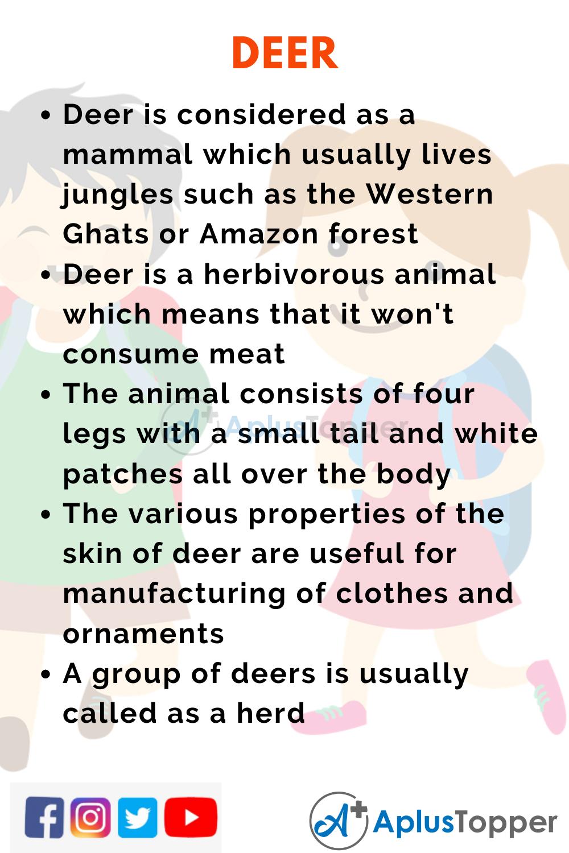 10 Lines on Deer for Kids