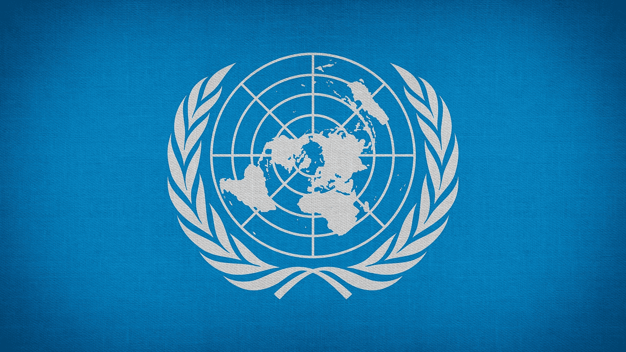 An Essay on United Nations Organisation