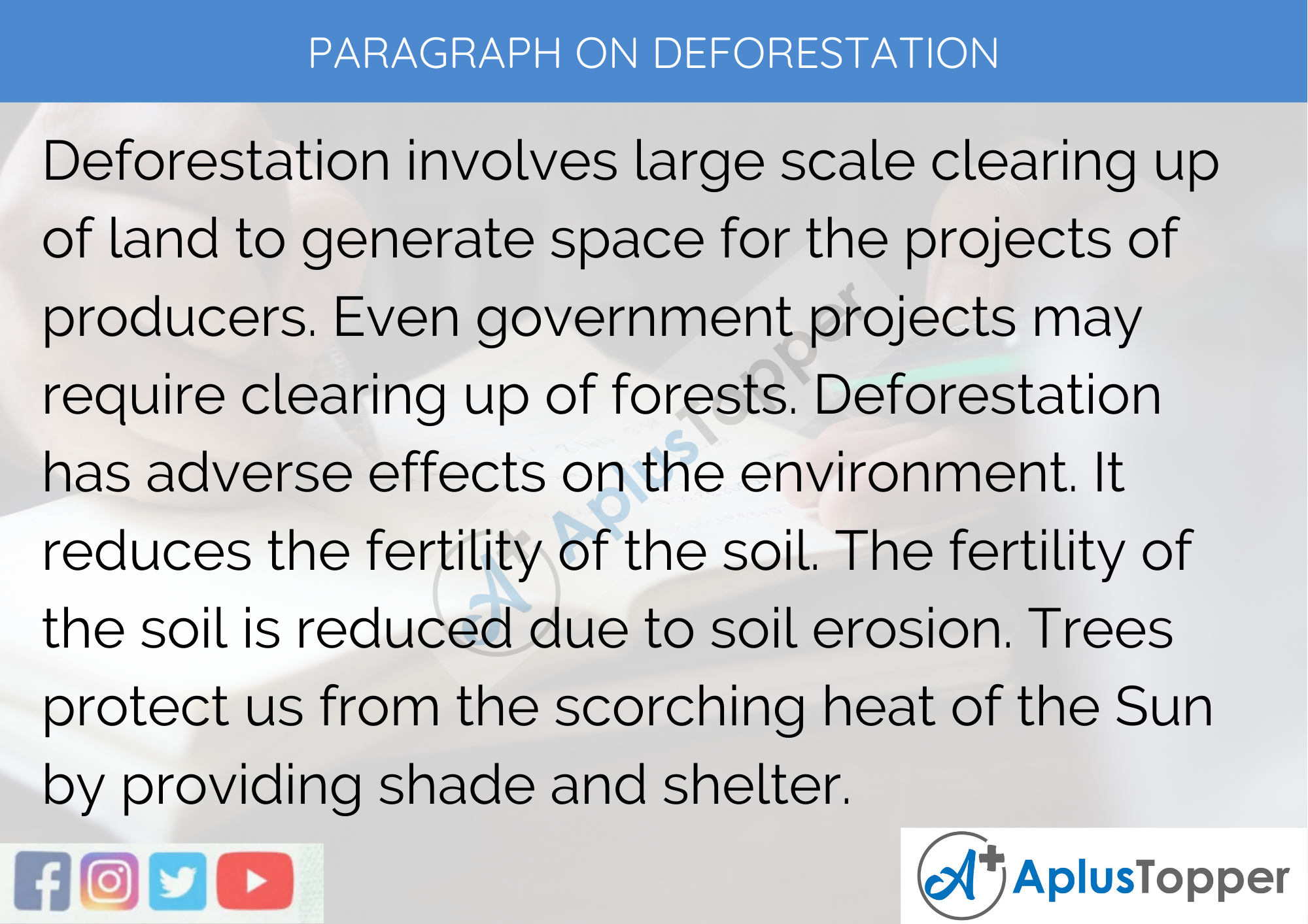Paragraph On Deforestation - 100 Words for Classes 1, 2, 3 Kids