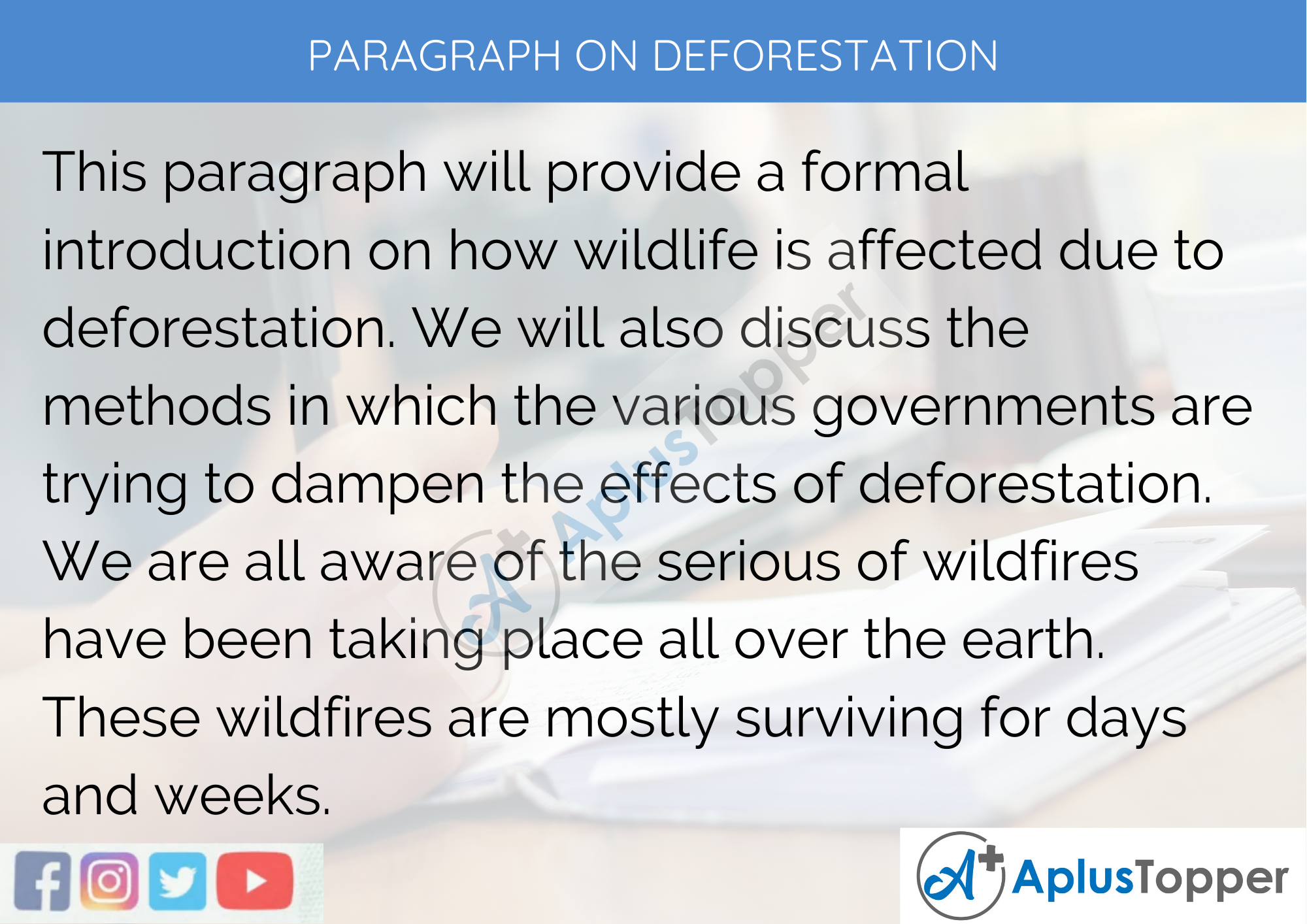 Paragraph On Deforestation - 250 to 300 Words for Classes 9, 10, 11, 12 And Competitive Exam Students