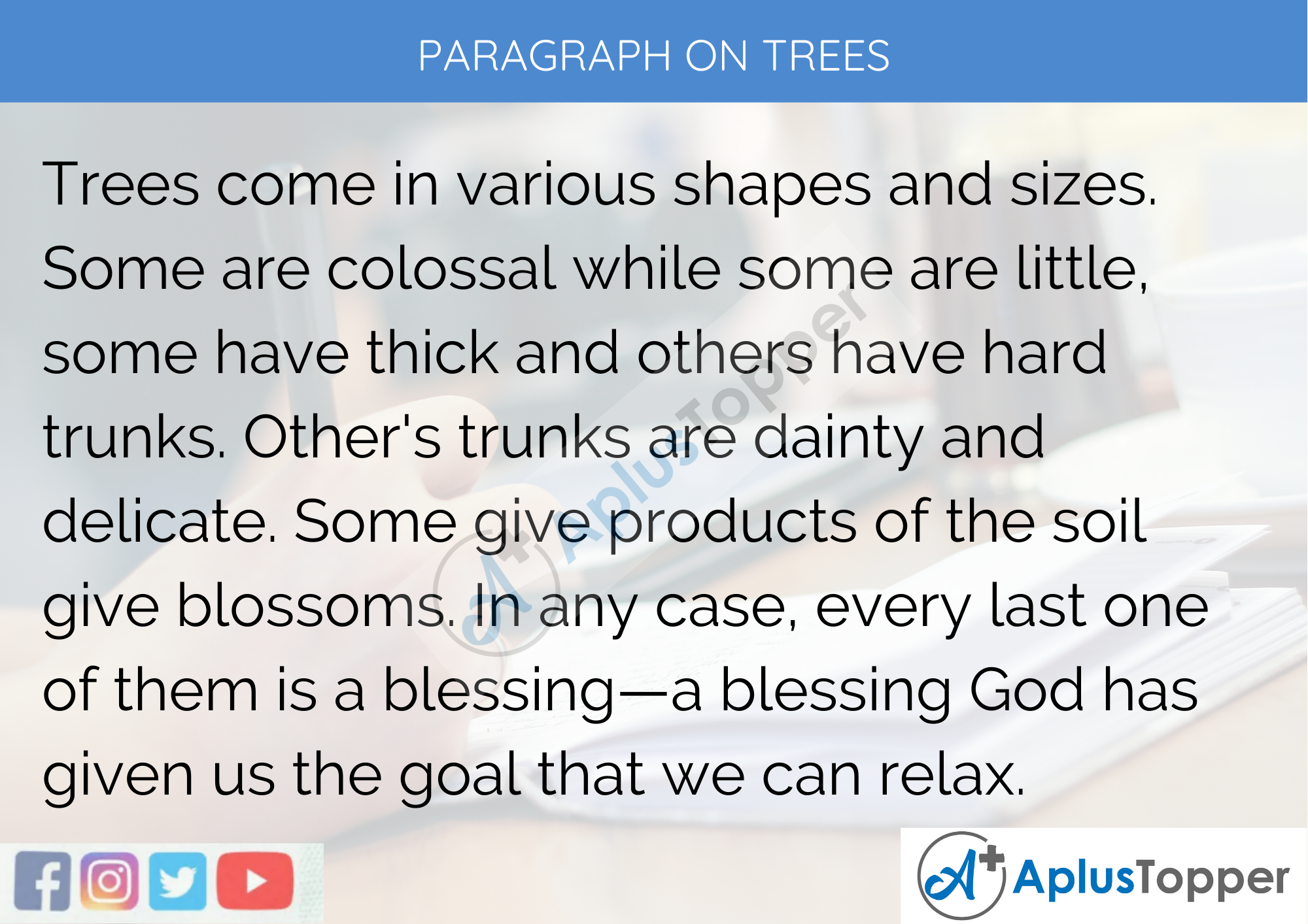 Paragraph On Trees - 250 to 300 Words for Classes 9, 10, 11, 12 And Competitive Exams Students