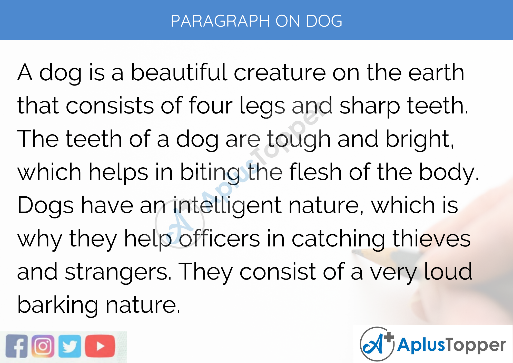 Paragraph on Dog - 250 to 300 Words for Classes 9, 10, 11, 12 and Competitive Exam Students
