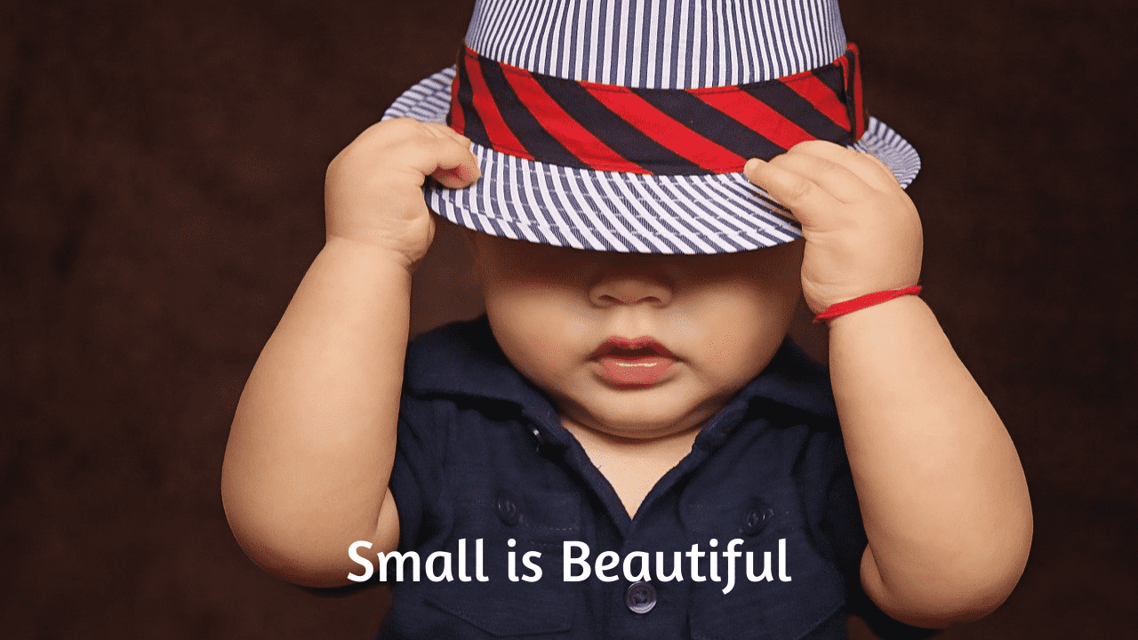 Small is Beautiful Essay