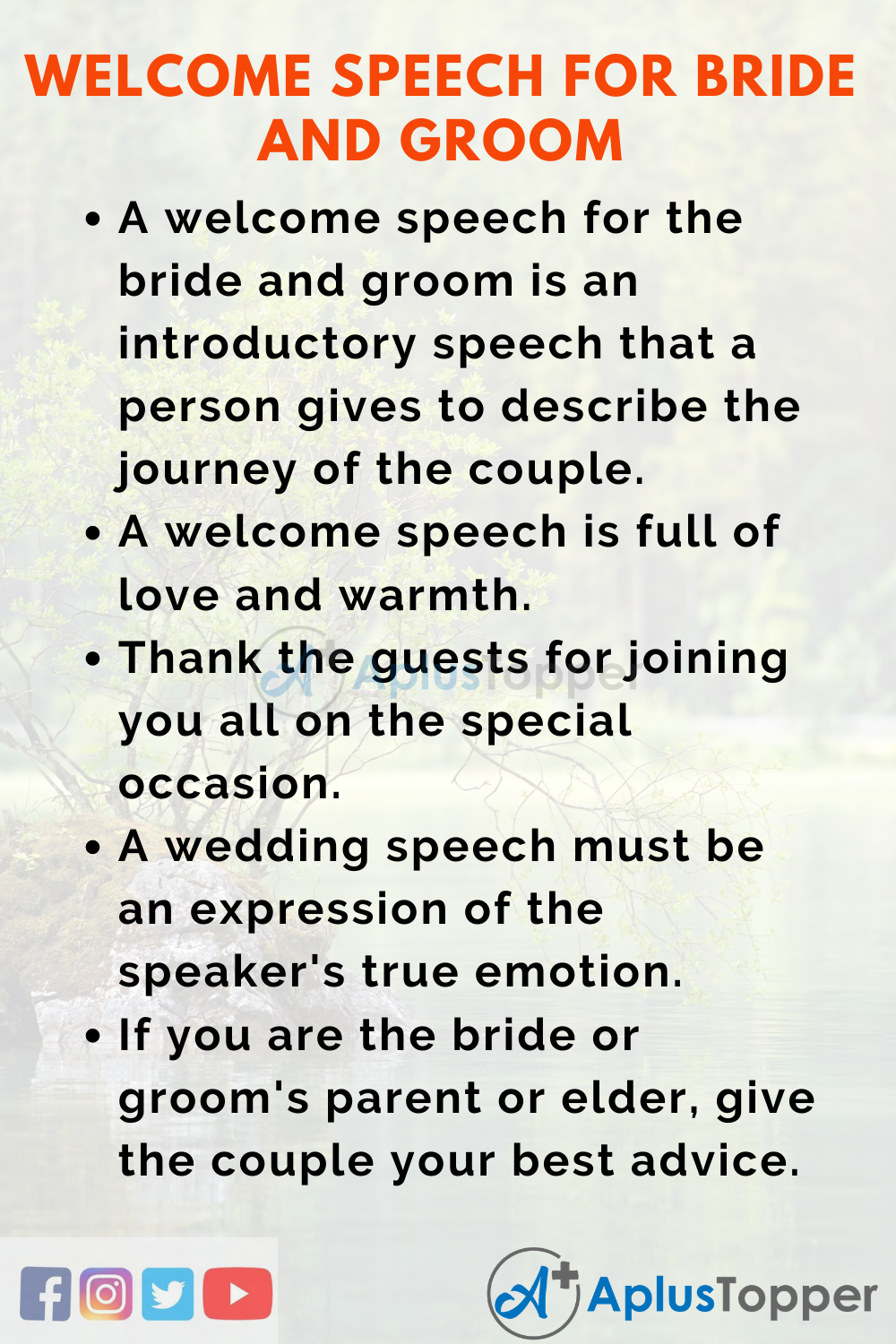 Groom toast to bride and Toasting: A