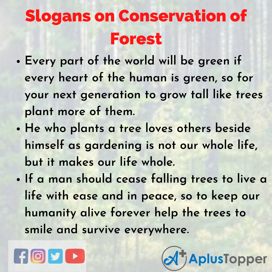 5 Slogans on Conservation of Forest in English