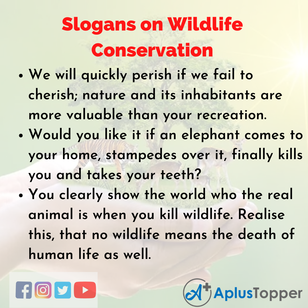 5 Slogans on Wildlife Conservation in English