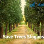 Save Trees Slogans
