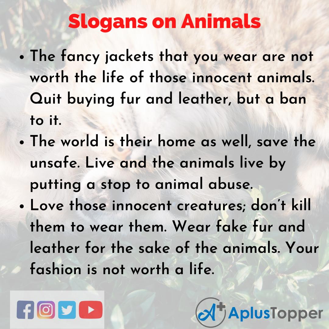 Slogans on Animals in English