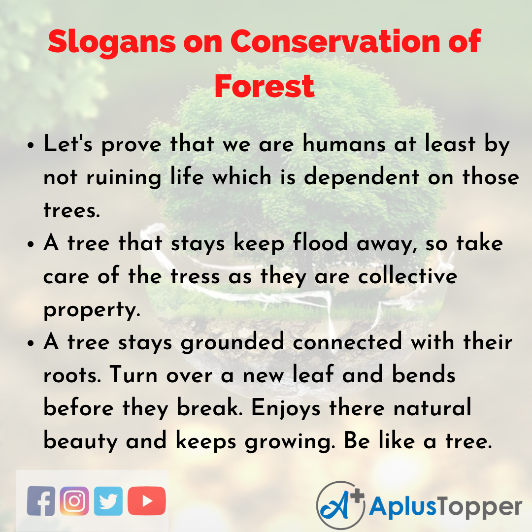 Slogans on Conservation of Forest in English