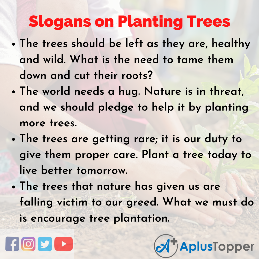 Slogans on Planting Trees in English