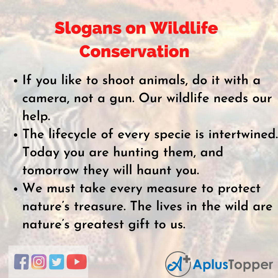 Slogans on Wildlife Conservation in English