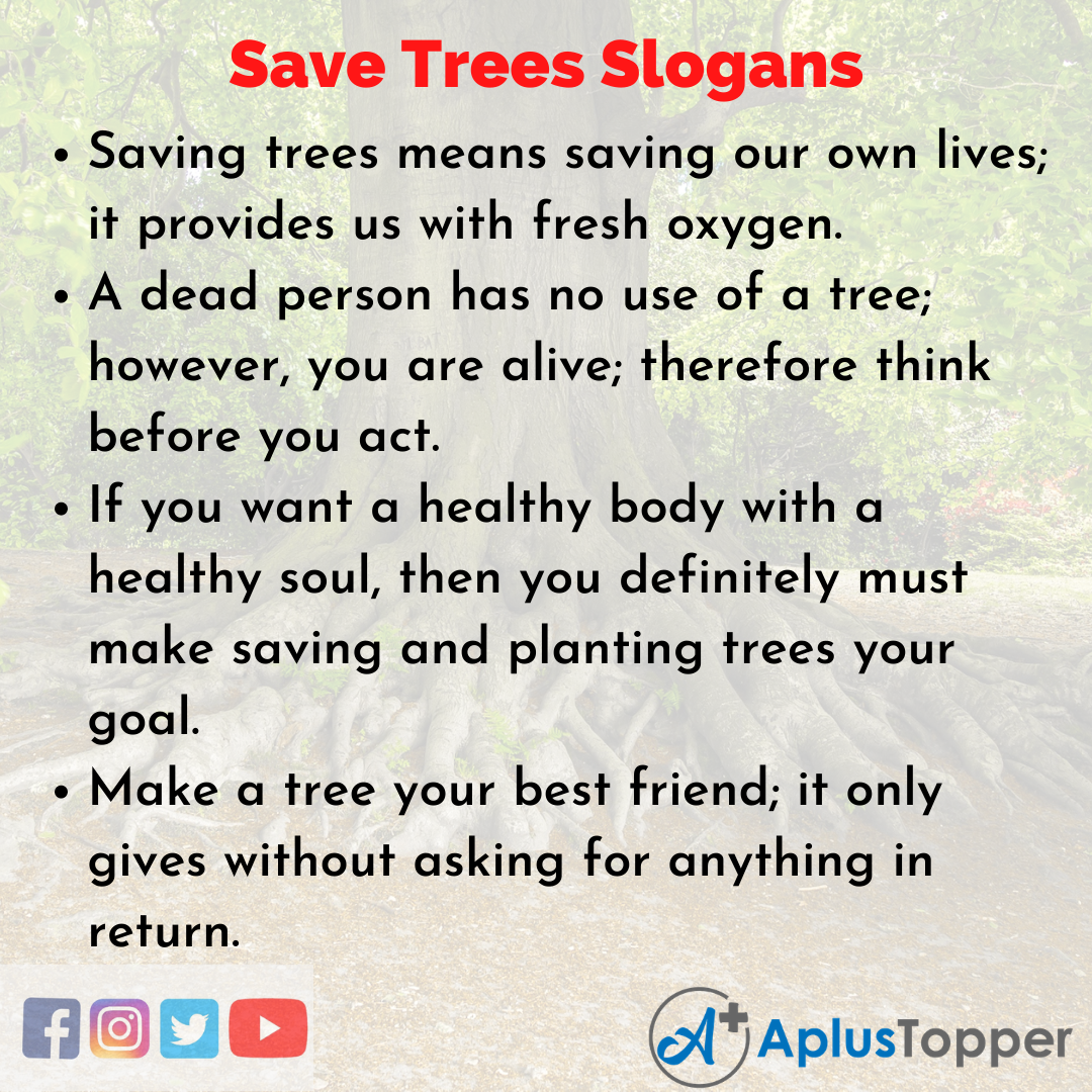 Unique and Catchy Save Trees Slogans