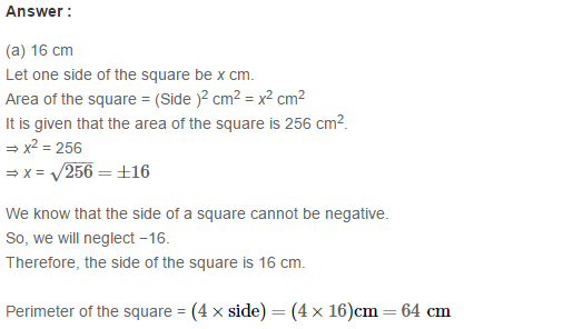 Concepts of Perimeter and Area RS Aggarwal Class 6 Maths Solutions CCE Test Paper 13.1