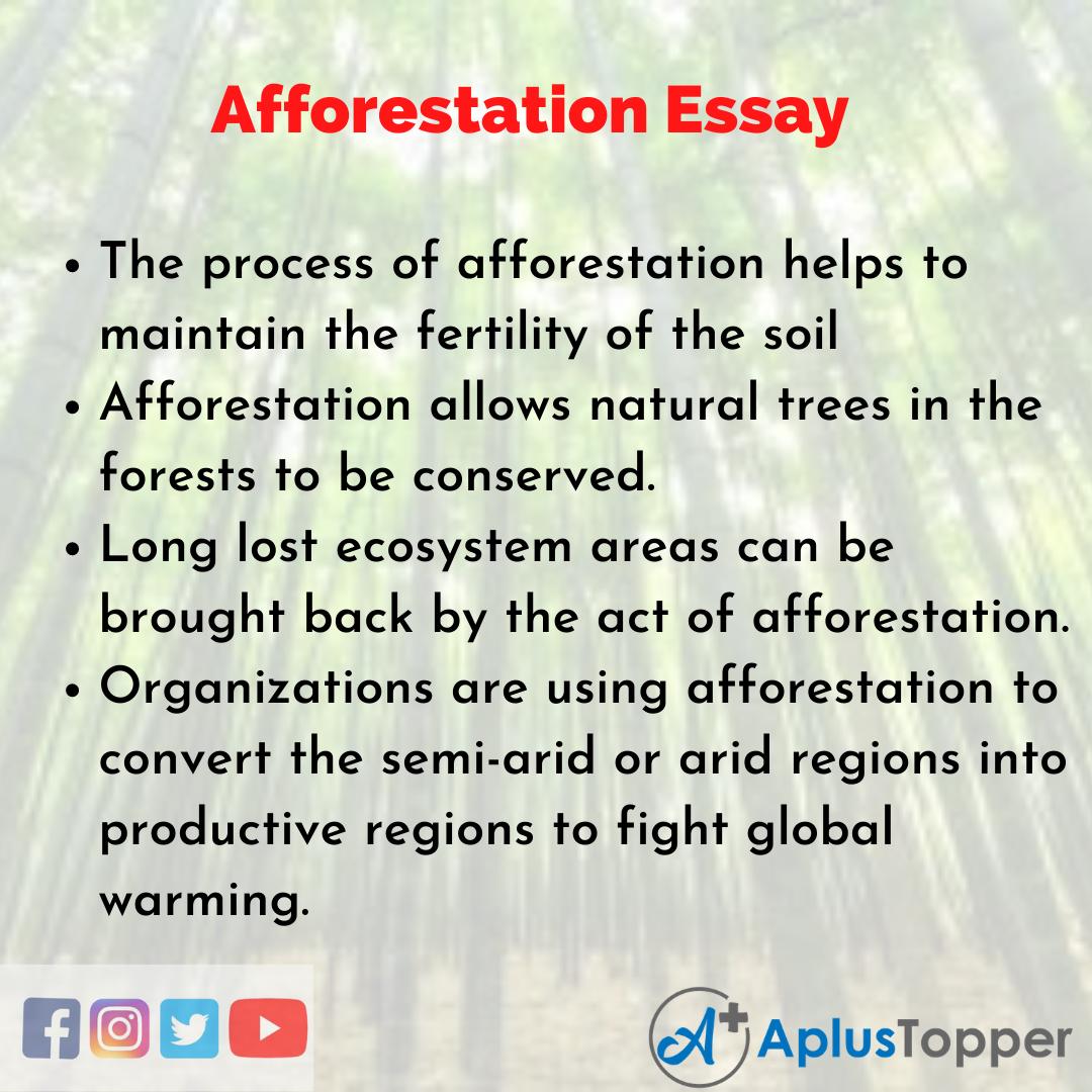 Essay about Afforestation
