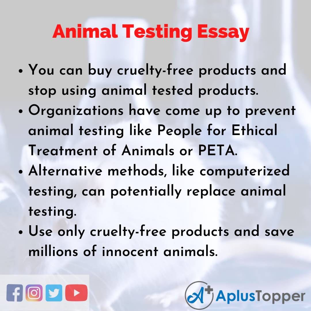 Essay about Animal Testing