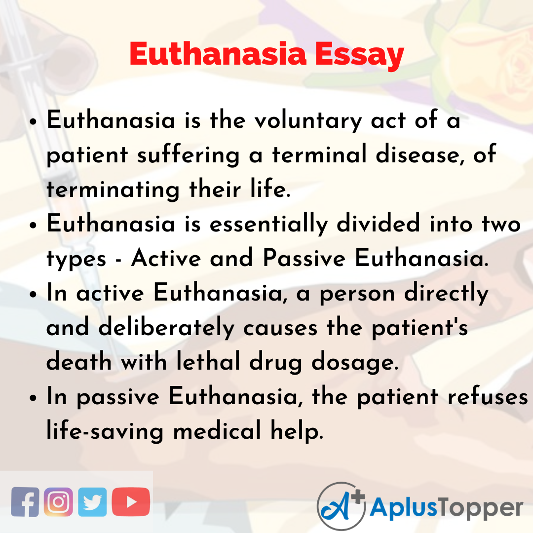 Essay about Euthanasia Essay
