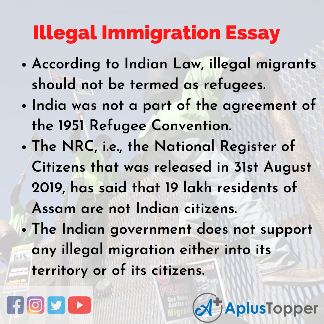 Essay about Illegal Immigration