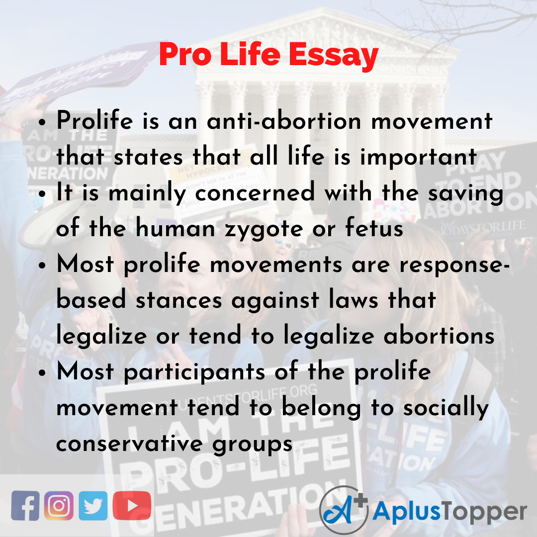 Essay about Pro Life