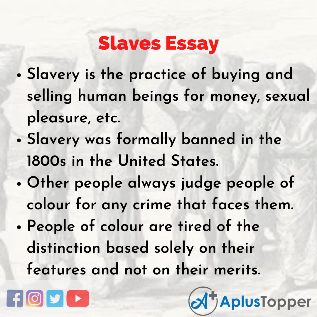 Essay about Slaves