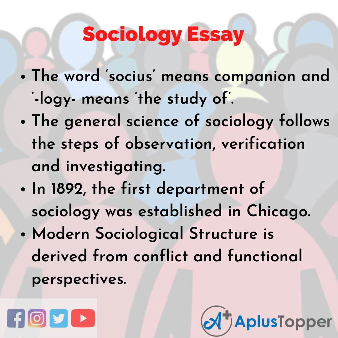 Essay about Sociology