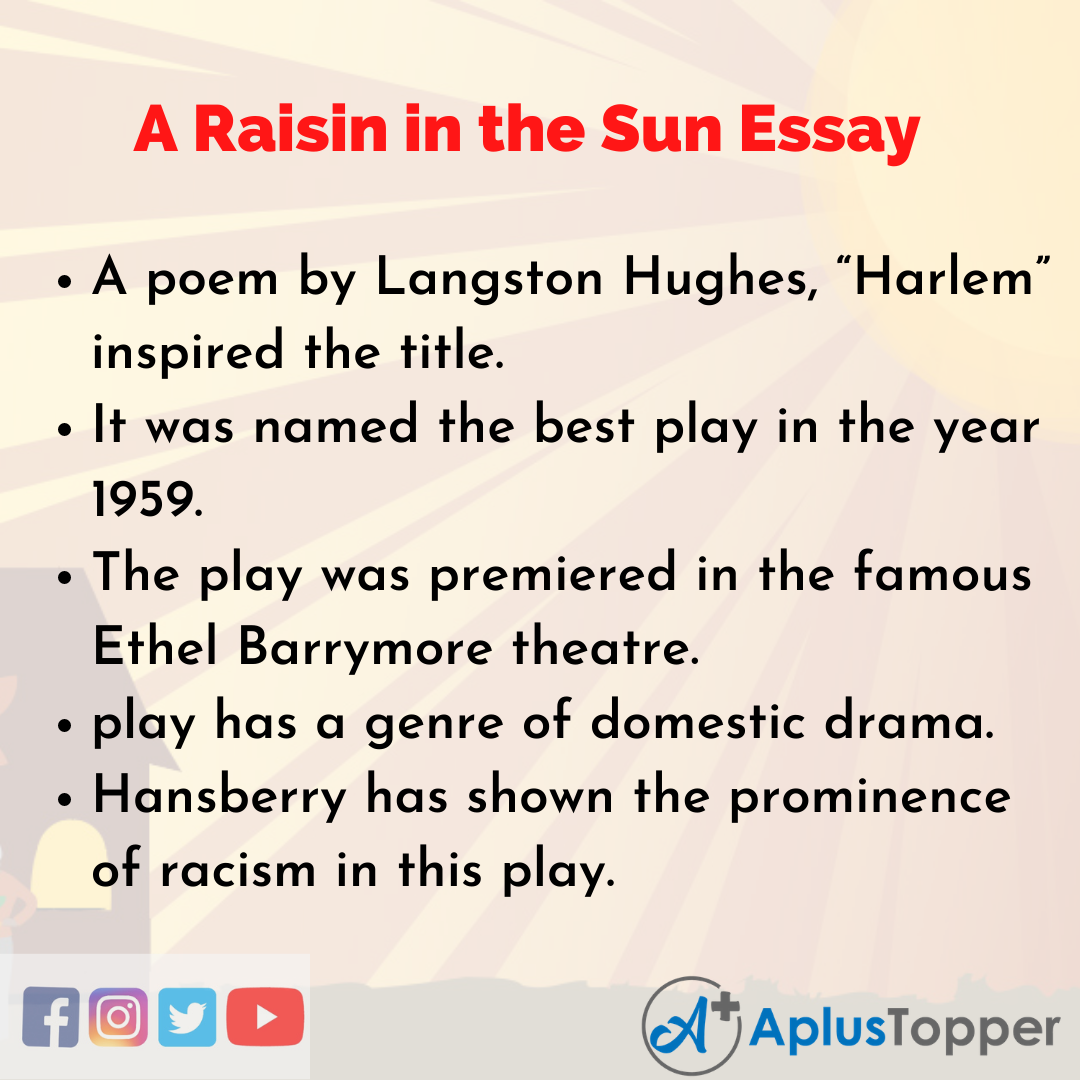 Essay on A Raisin in the Sun