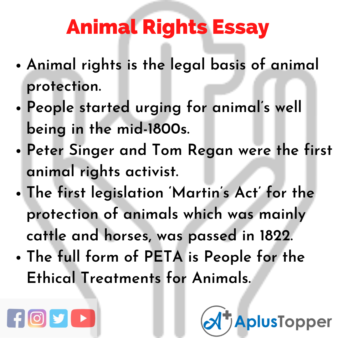 Essay on animals freedom claims investigator cover letter