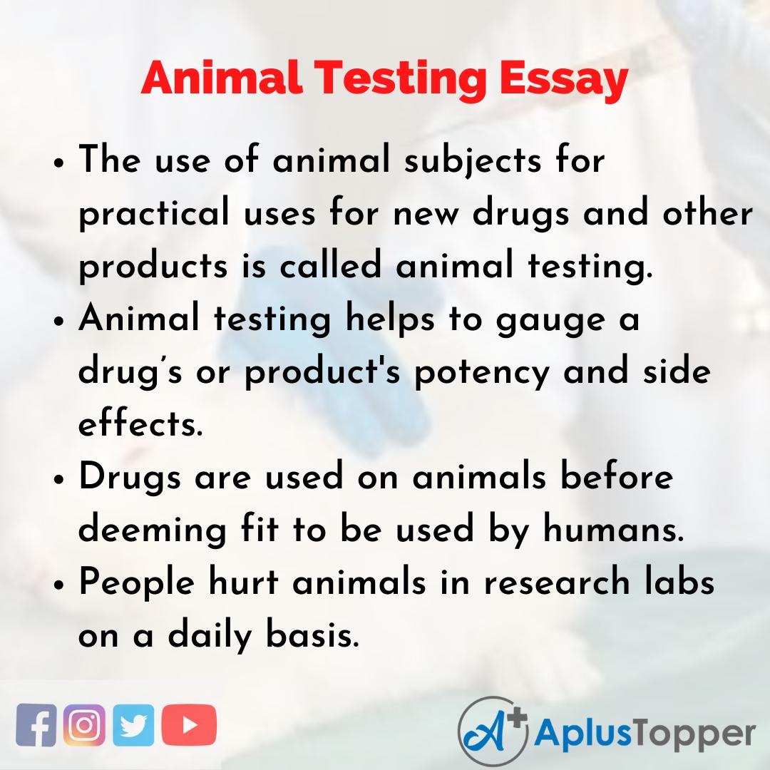 Essay on Animal Testing