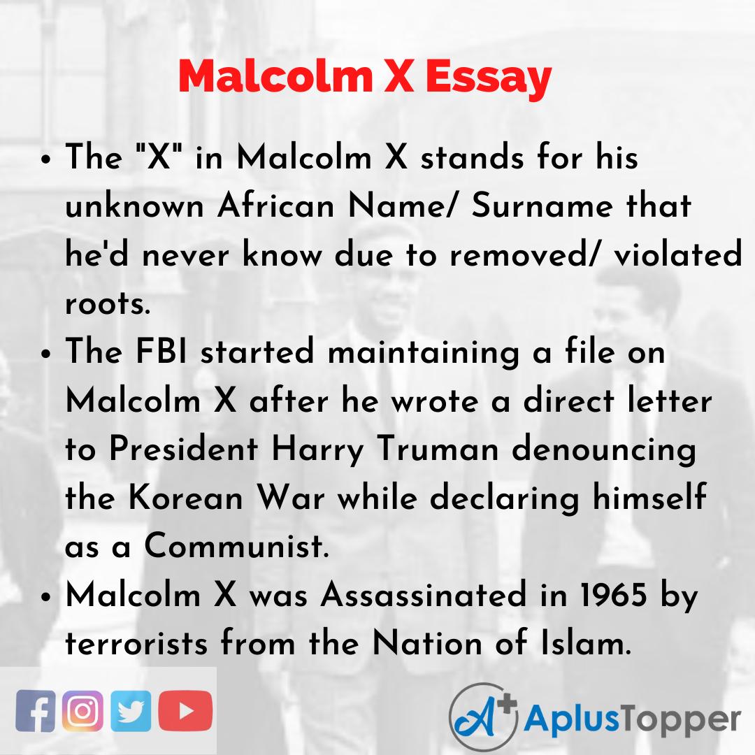 Essay on Malcolm X