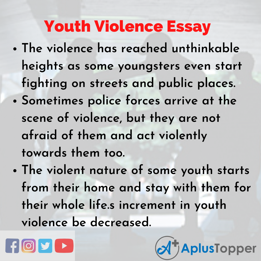 Essay on Youth Violence