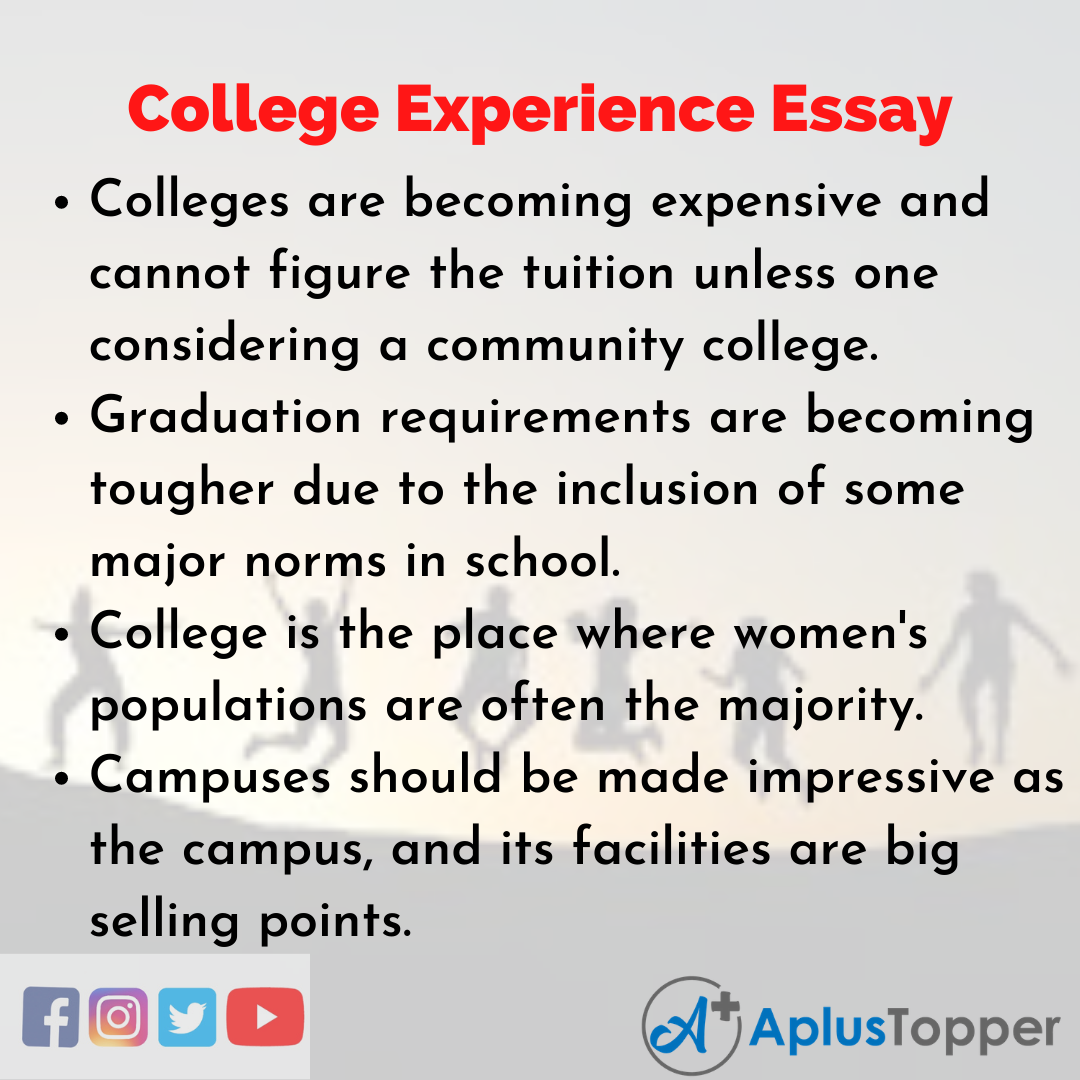 Essay about College Experience