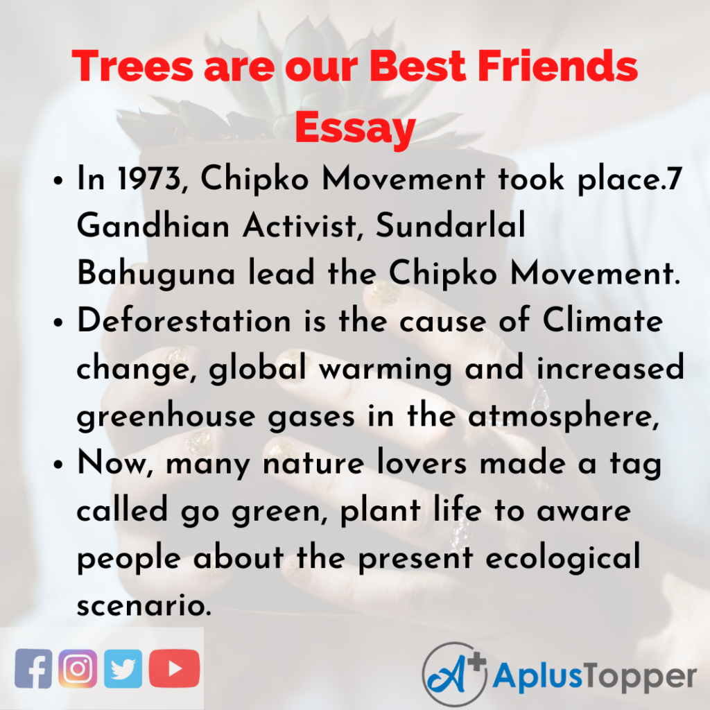 Essay about Trees are our Best Friends
