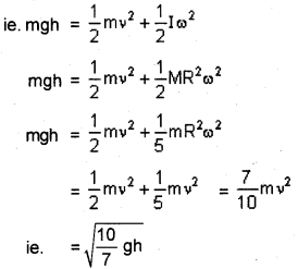 Plus One Physics Previous Year Question Paper March 2019, 13