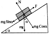Plus One Physics Previous Year Question Paper March 2019, 19