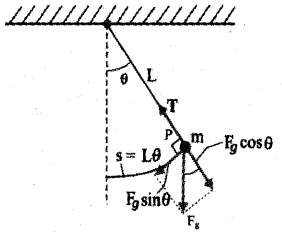 Plus One Physics Previous Year Question Paper March 2019, 23