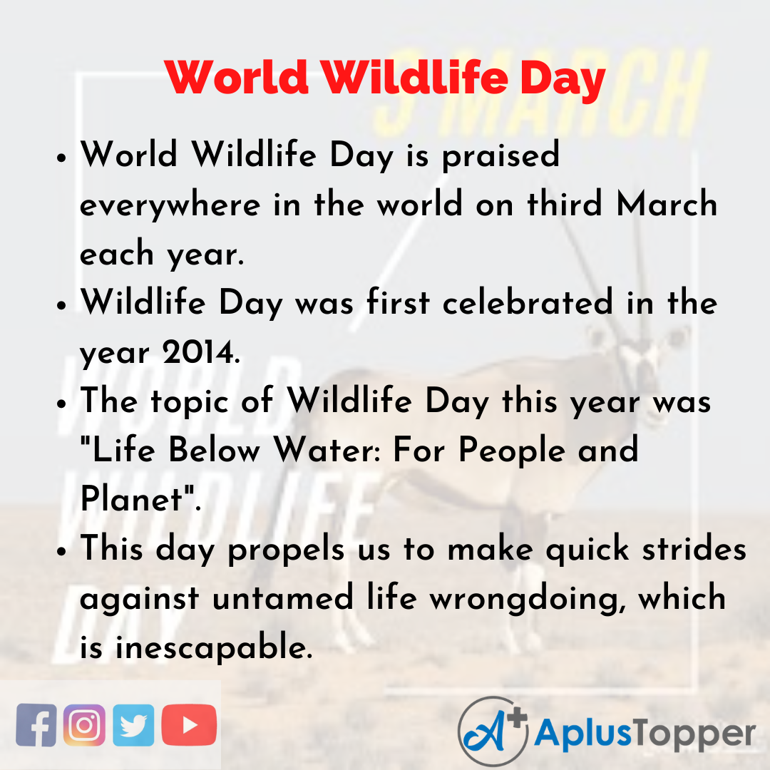 10 Lines about World Wildlife Day