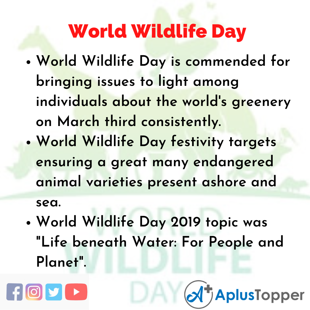 10 Lines of World Wildlife Day