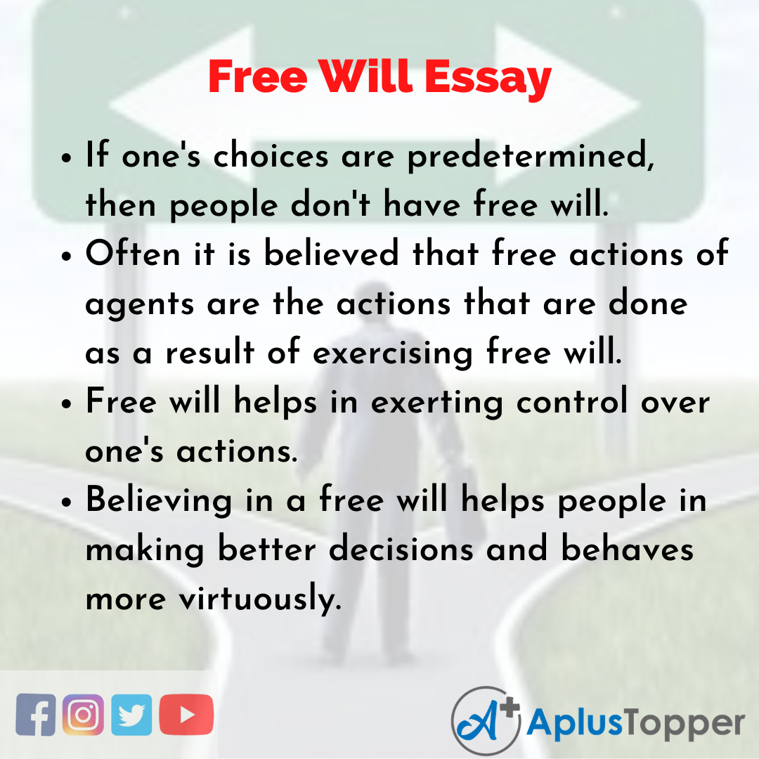 Essay about Free Will