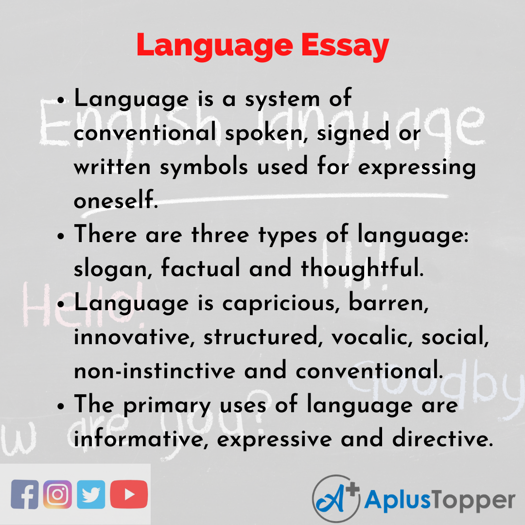 Essay about Language
