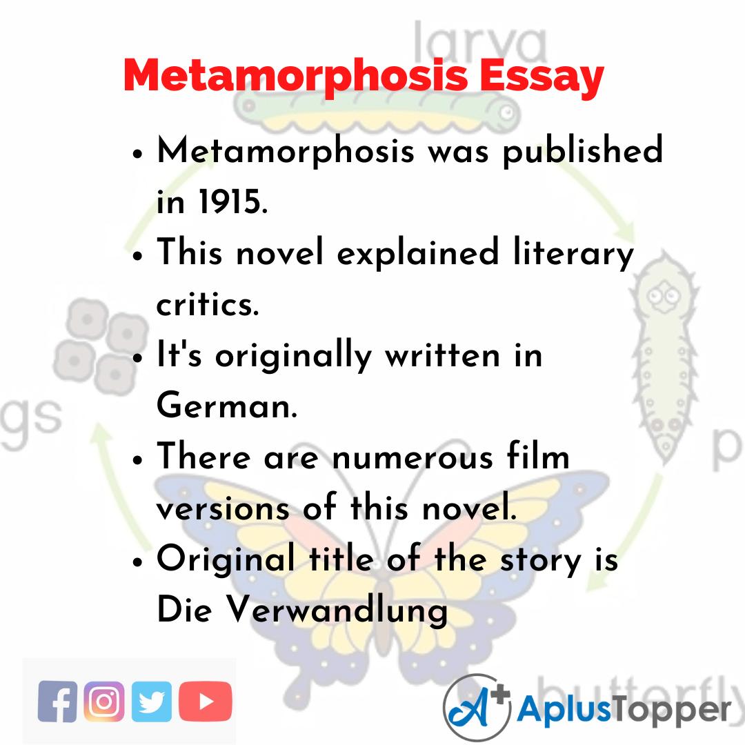 Essay about Metamorphosis