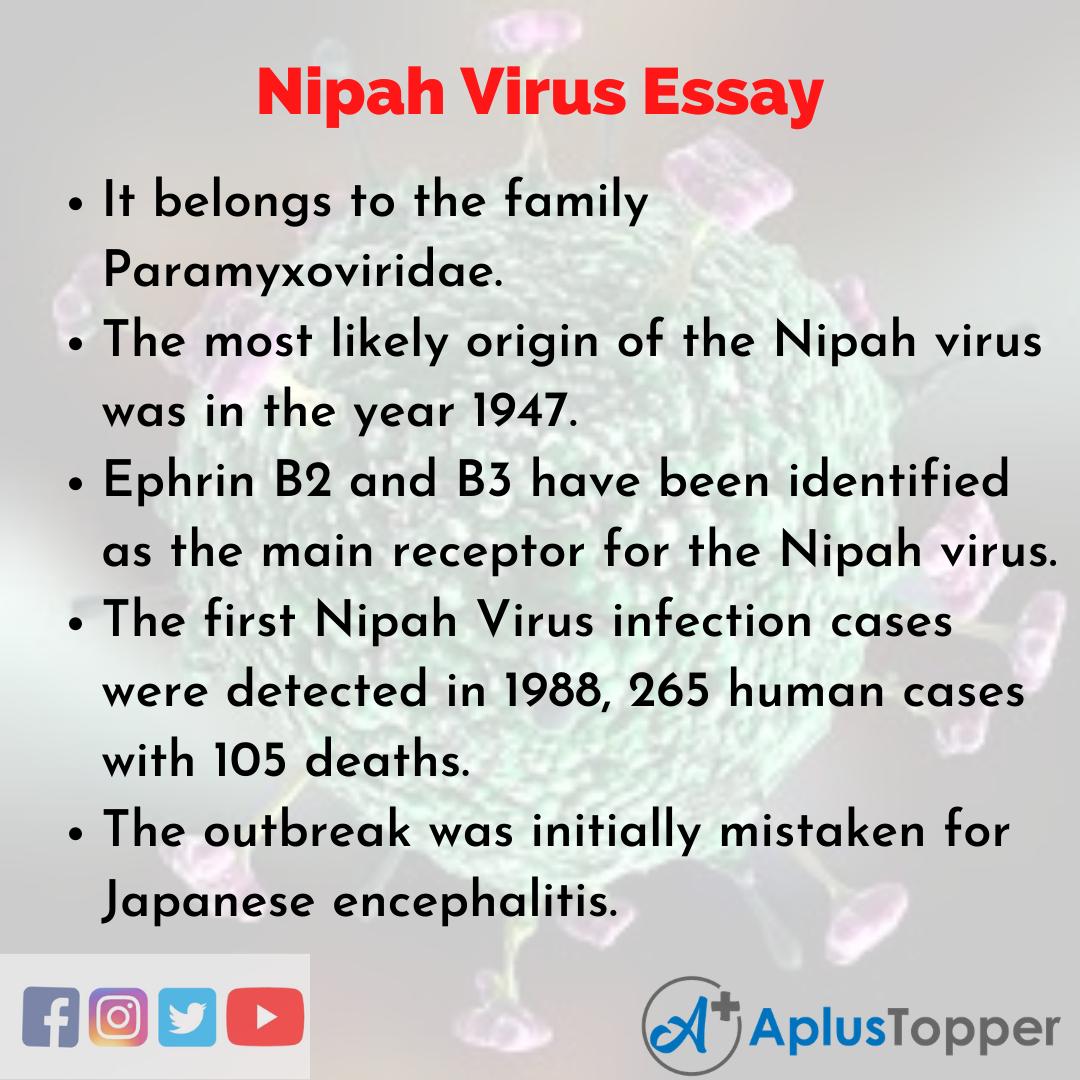 Essay about Nipah Virus
