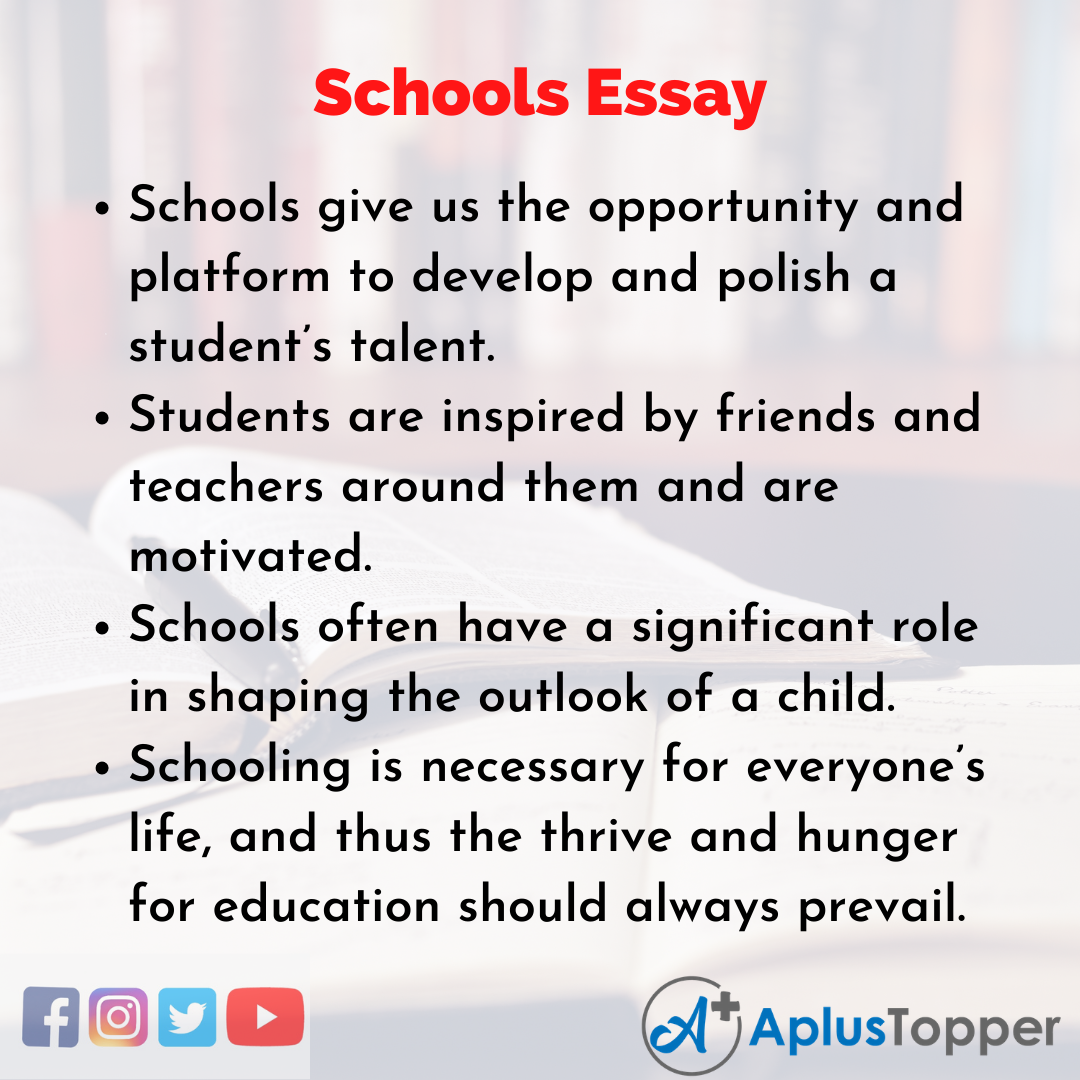 Essay about Schools