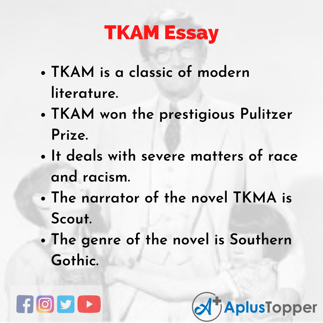 Essay about TKAM