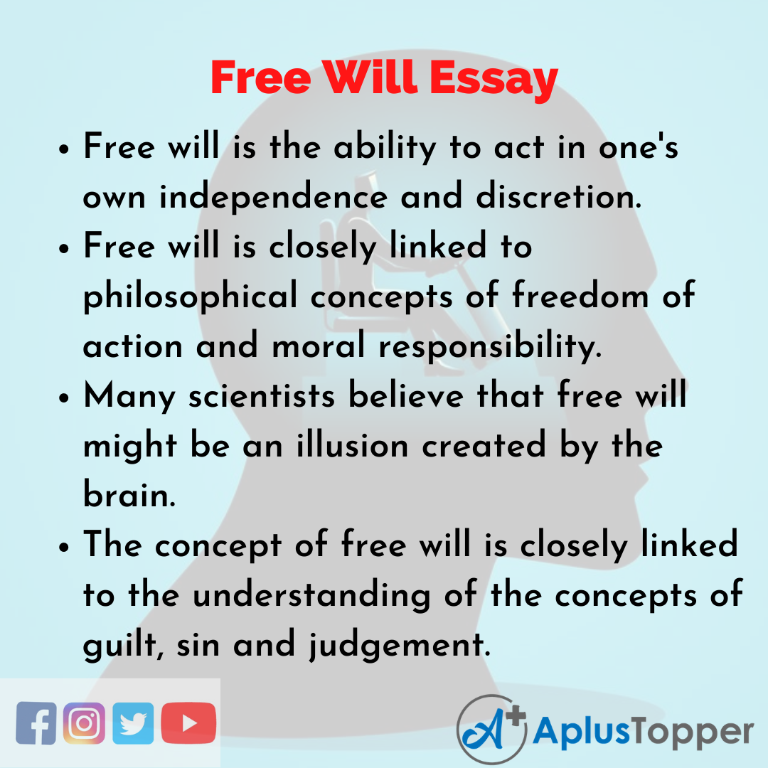 Essay on Free Will