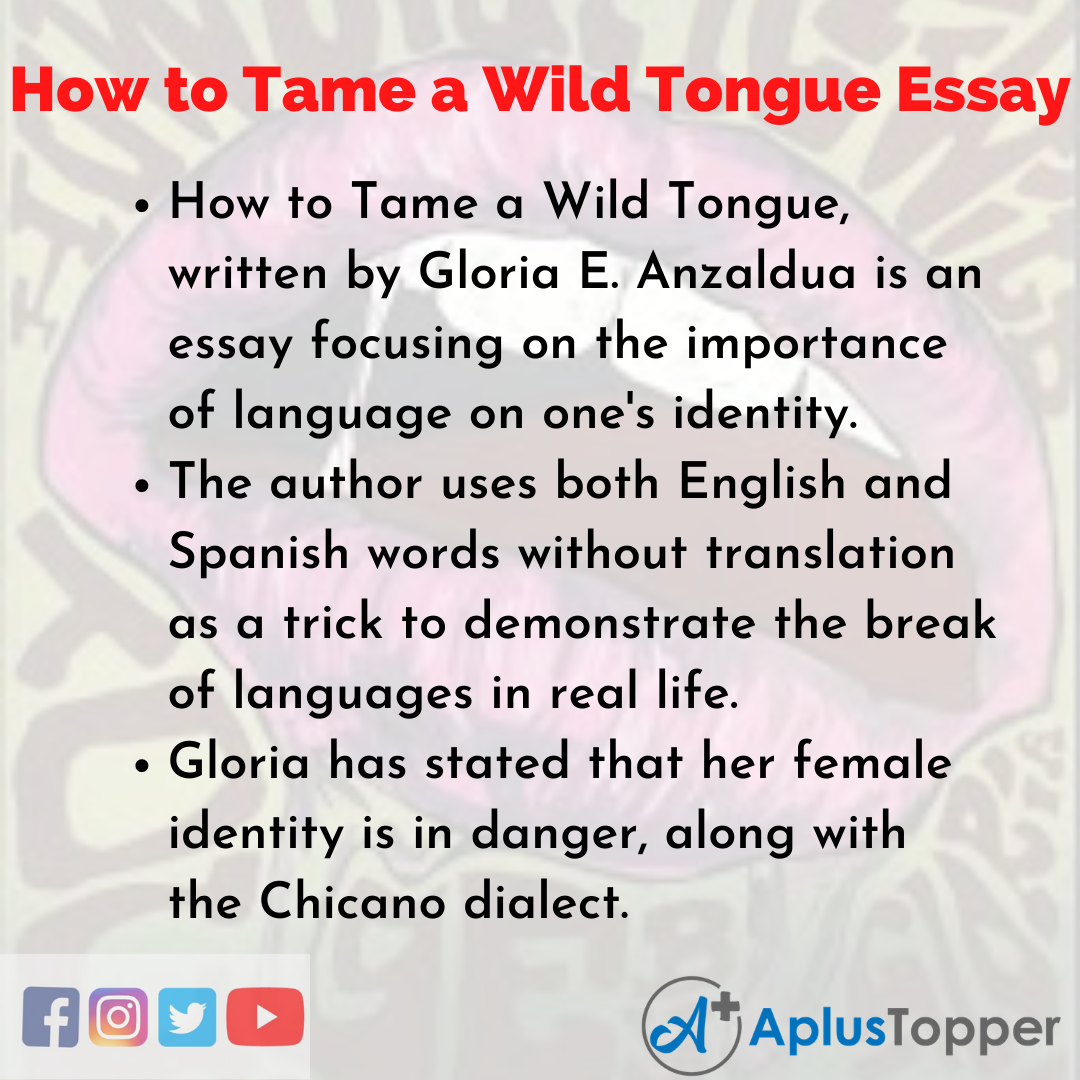 Essay on How to Tame a Wild Tongue