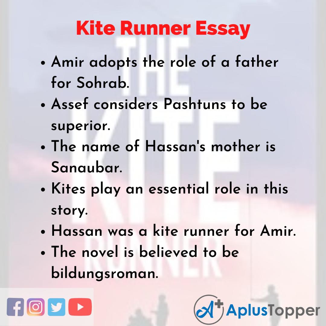 Essay on Kite Runner