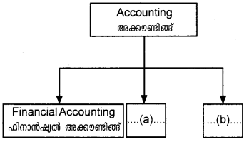 Plus One Accountancy AFS Previous Year Question Paper March 2018, 1