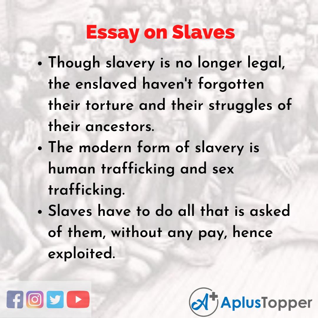 Slaves Essay