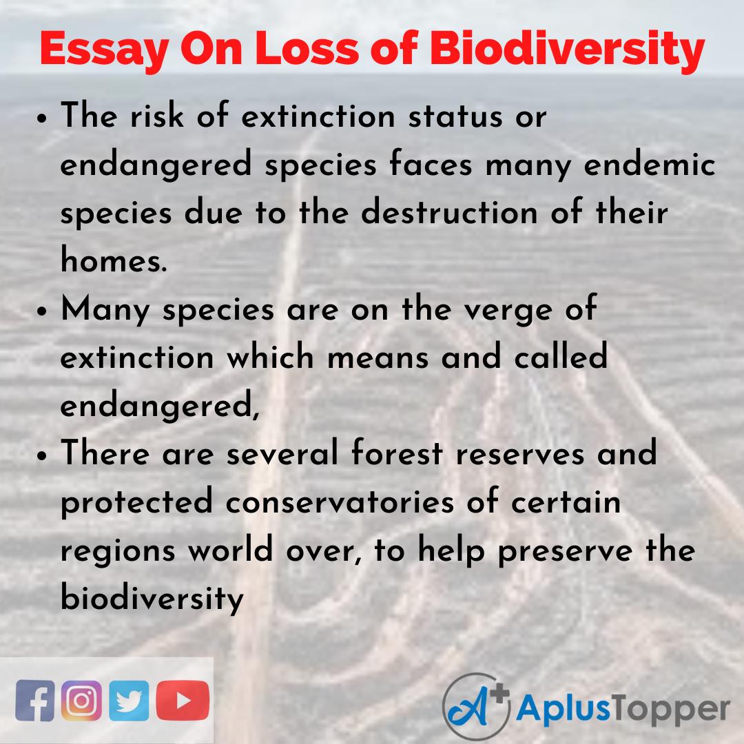 10 Lines On Loss of Biodiversity Essay