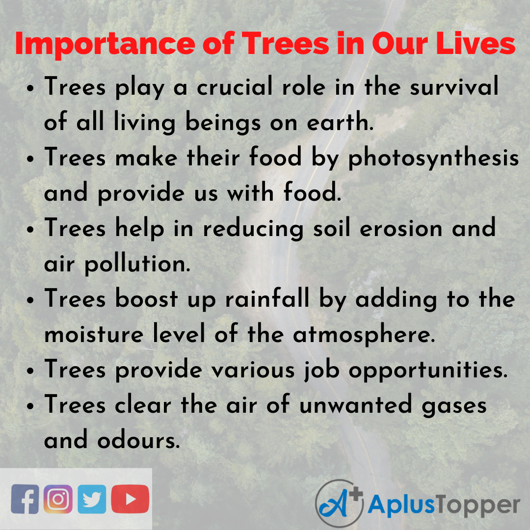 10 Lines on Importance Of Trees In Our Lives Essay