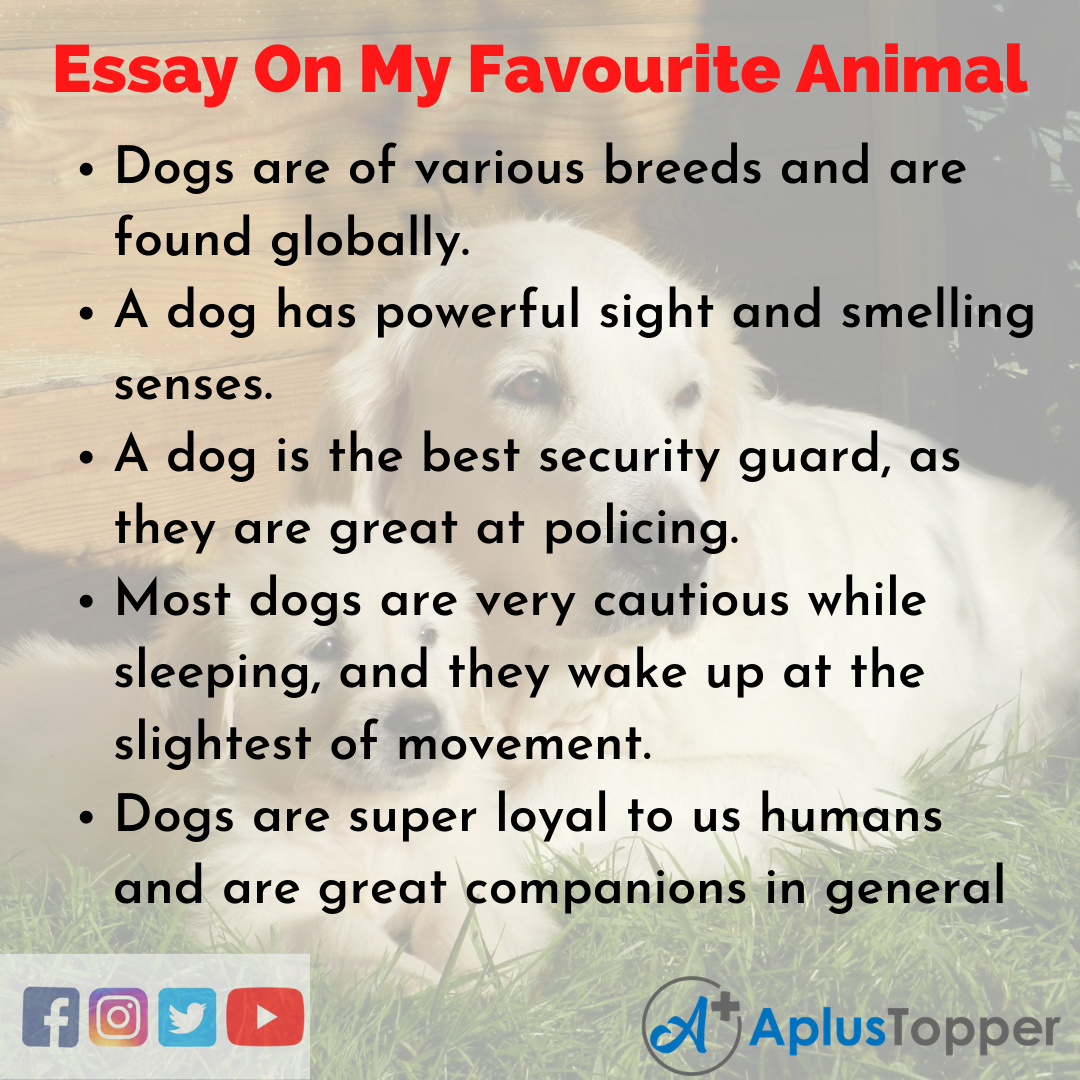 10 Lines on My Favourite Animal